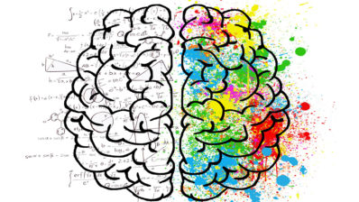 The brain: the right hemisphere records visual and spatial memories, such as drawings, while the left hemisphere registers verbal memory, for example wors or numbers. Image from Pixabay.