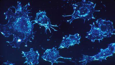 La transducción de señales en la célula sigue siendo un tema de intensa investigación (Imagen de Skeeze en Pixabay).