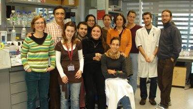 Group led by Fernando Giraldez (DCEXS-UPF) with Cristina Pujades and Berta Alsina
