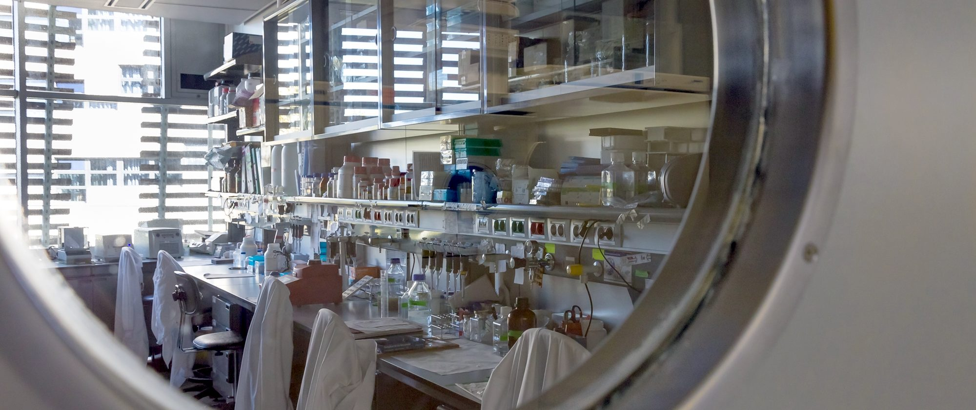 A glimpse of the laboratories. Pepe Aguado Ruiz (visitor of the PRBB Openday 2013)