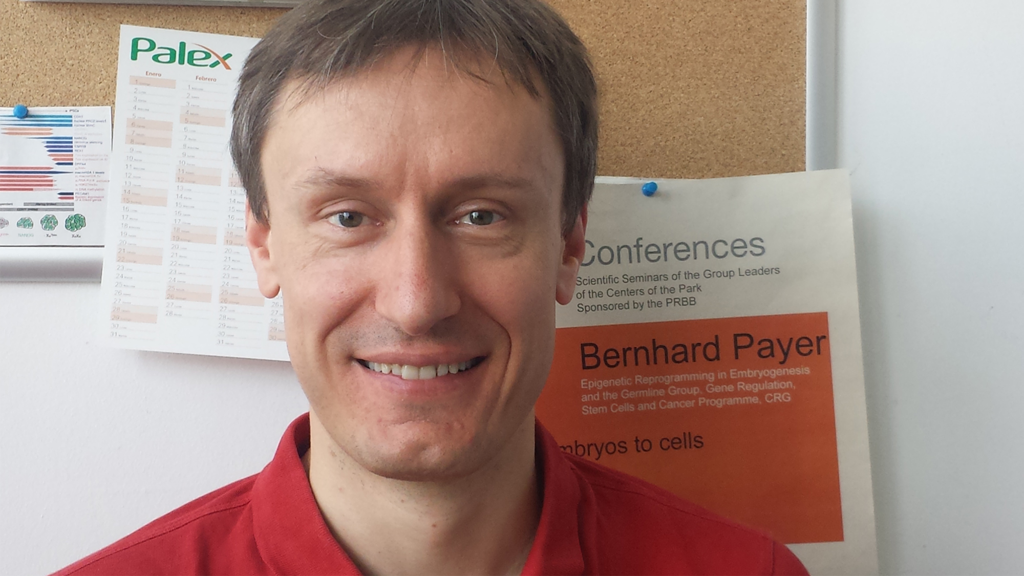 Bernhard Payer is group leader of the Epigenetic reprogramming in embryogenesis and the germline Lab.