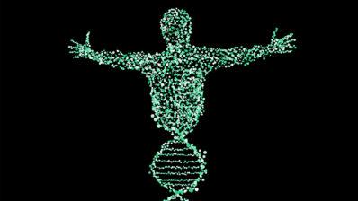 Cómo somos no viene determinado tan solo por nuestros genes. El ambiente y la epigenética són muy importantes. Imagen de Patrick Neufelder en Pixabay.