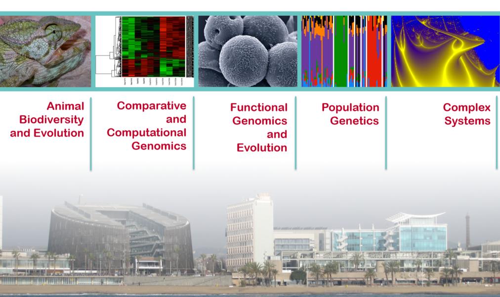 The IBE is organised in 5 scientific programs