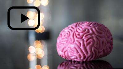 El cerebro está formado por células complejas, como lo son las neuronas, que forman redes para estar interconectadas entre ellas (Imagen de Juniorbolivar en Wikipedia).