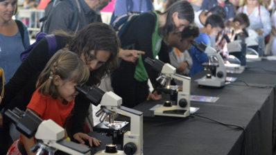 Microscopis, realitat virtual, xerrades, experiments, visites guiades... Unes 2000 persones van poder satisfer la seva curiositat cientifica al PRBB. © PRBB / Jordi Casañas