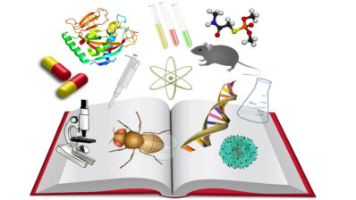 La ciencia abierta implica hacer todo el proceso científico, desde la recogida de datos a su publicación, accesible a todos. Imagen de Mari Carmen Cebrián.