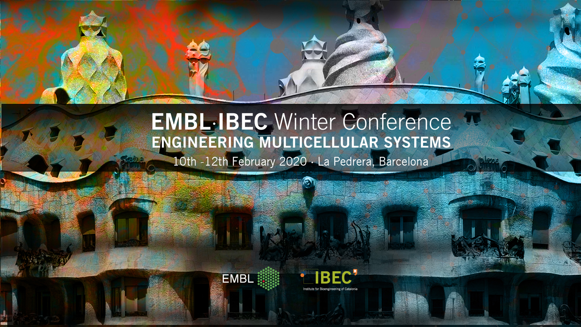 EMBL Barcelona and IBEC found it interesting to use their synergy to start a collaboration and they decided to do it with a symposium that will bring together international experts in multicellular systems.