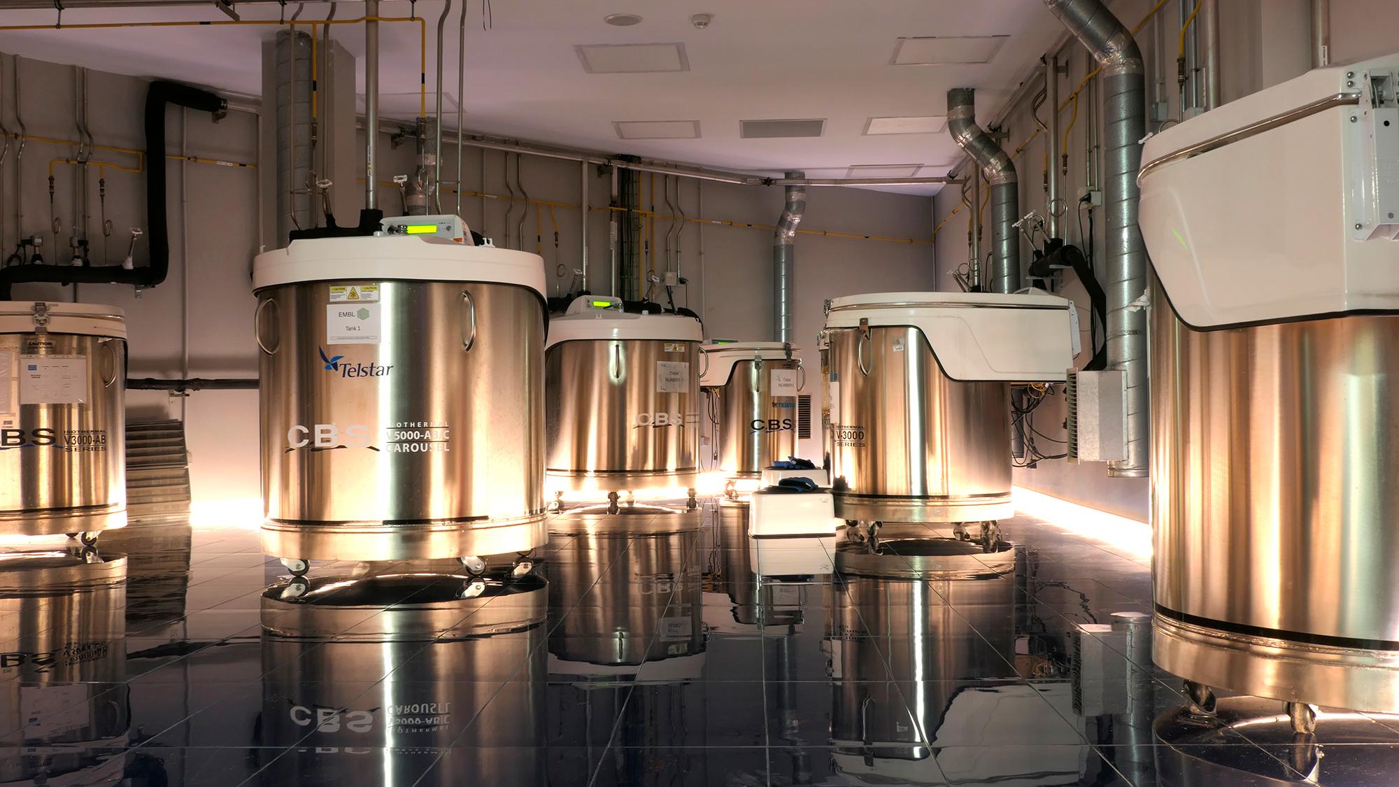 A new and flashing cryogenics room
