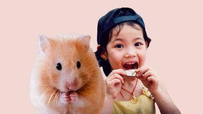 Humans i ratolins, diferents ritmes de vida. Fotos originals de Tong Nguyen van i Ricky Kharawala per Unsplash