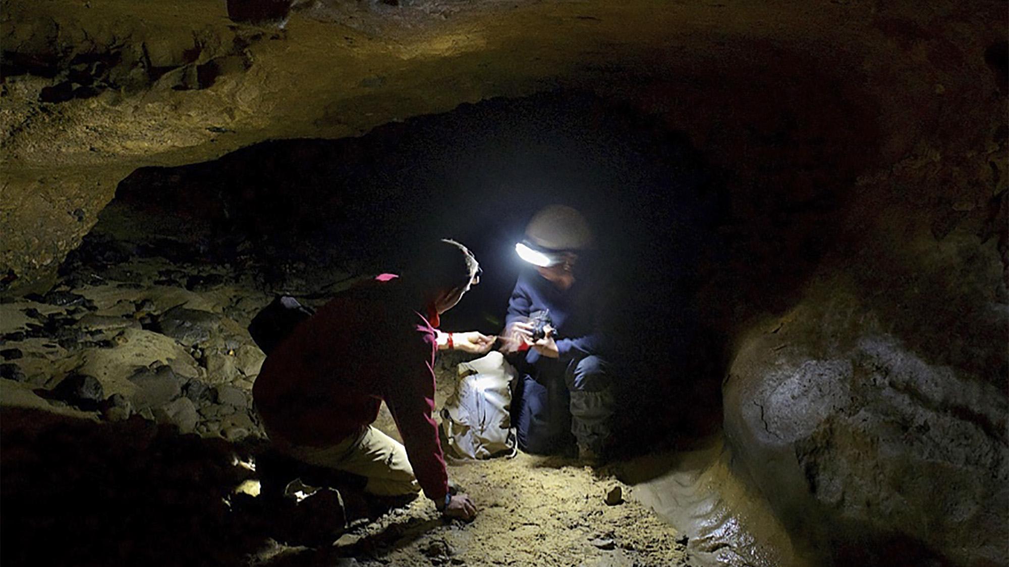 Imagen del yacimiento del Sidrón (Asturias). Crédito: César Hernández