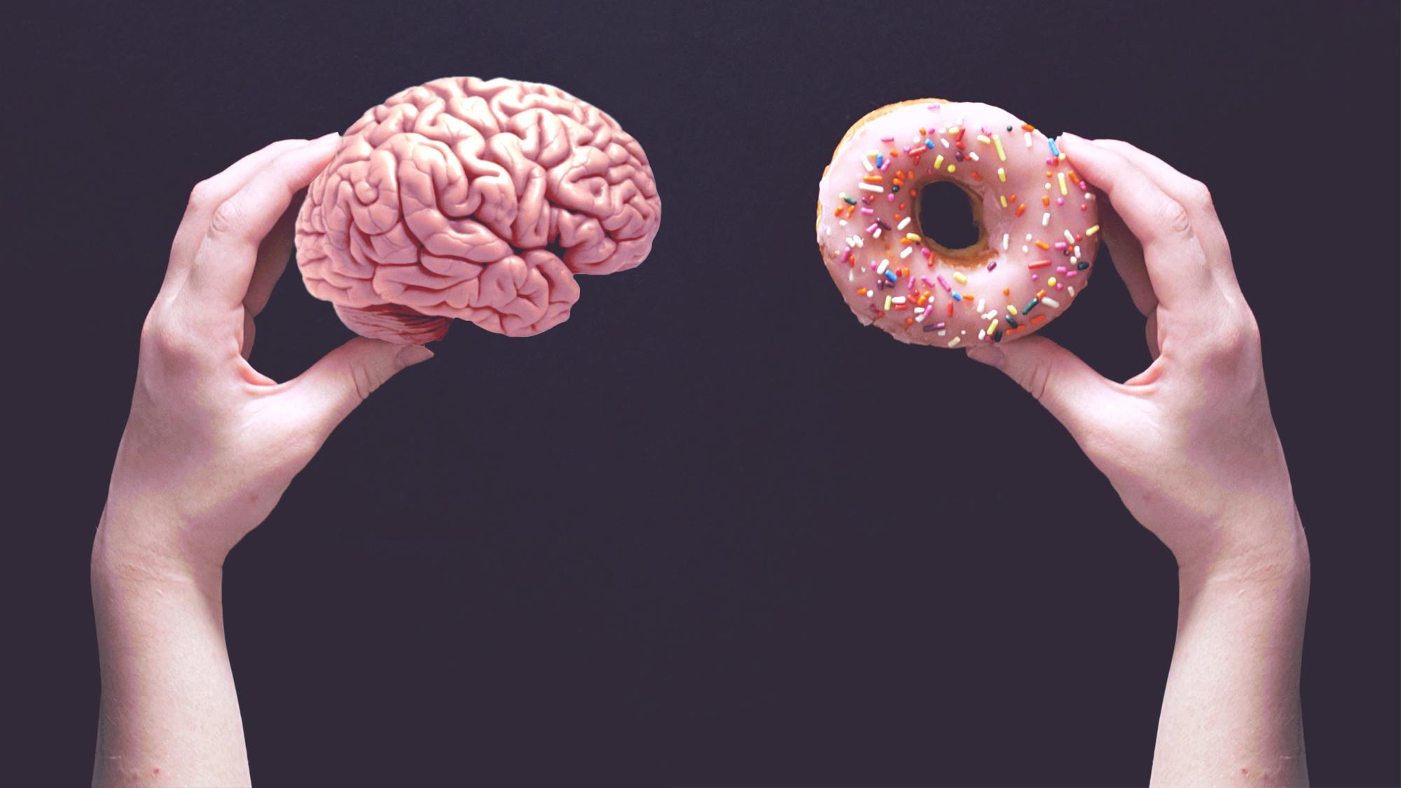 Trobada la relació entre l'obesitat i la deterioració de la memòria