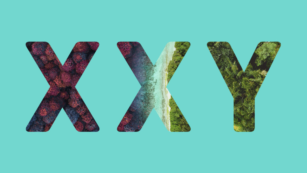 Sex, defined by the X and Y chromosomes, influences gene expression in most human tissues.