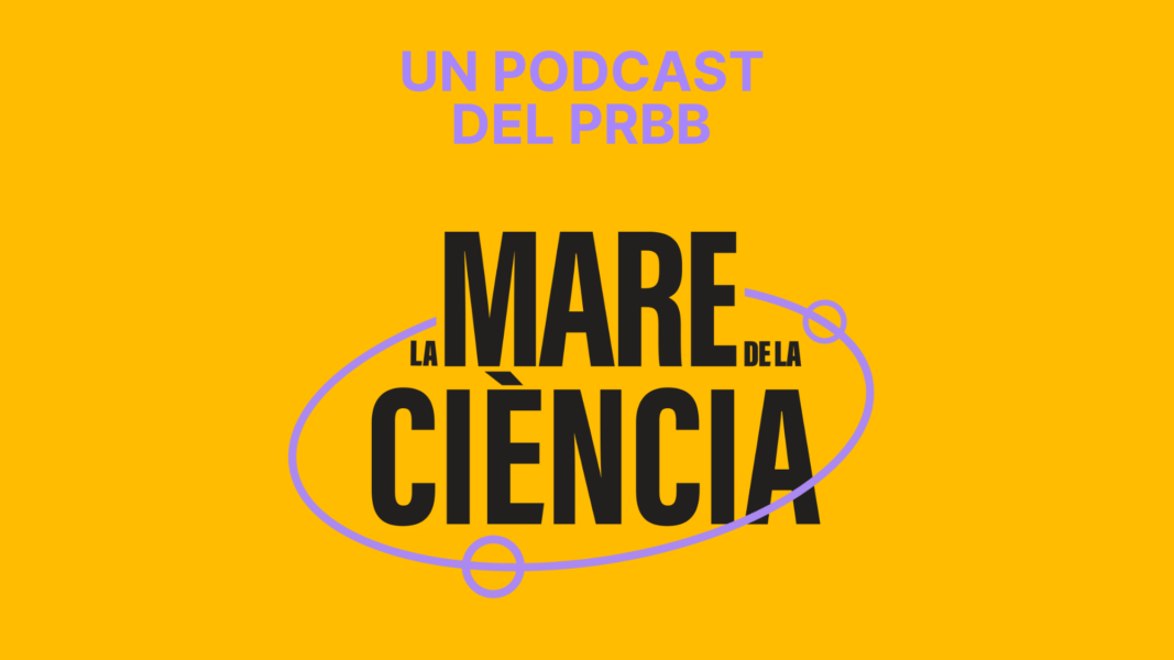 'La mare de la ciència', is the first PRBB podcast. Small capsules to know the research that is done in the centers of the park through the vision of the leading researchers.