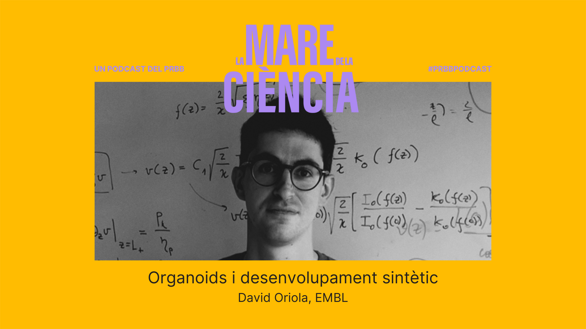 """David Oriola (EMBL): """"How can a protein do its job when there are tones of proteins and molecules randomly moving around?"""""""