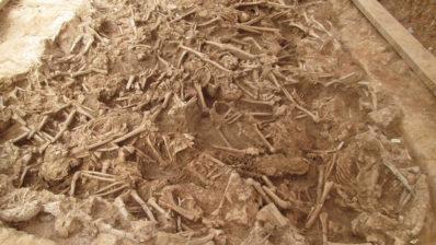 En un tros de terra excavat es veuen ossos de molts escalets.